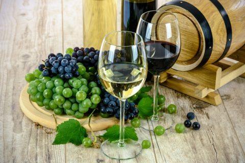 Δείτε πως να επιλέγετε πάντα το καλύτερο κρασί