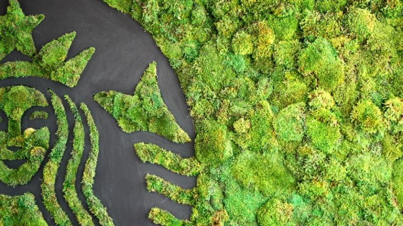 Starbucks: πρωτοβουλίες για τον Άνθρωπο και το Περιβάλλον