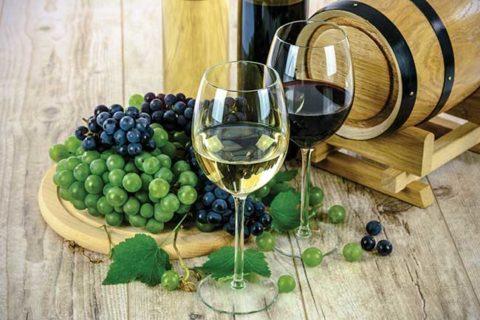 Τι σημαίνει βιολογικό κρασί;