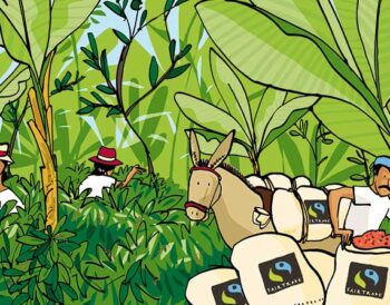 ΒΙΟΛΟΓΙΚΟΣ: Ποιος είναι ο Bio και Fairtrade καφές;