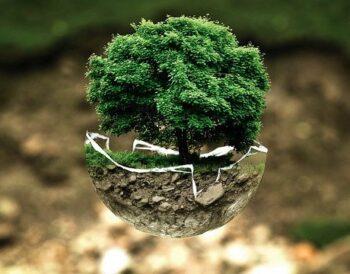 Οικολογική συνείδηση και Michelin Green Stars
